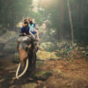 The elephant rider's key to success